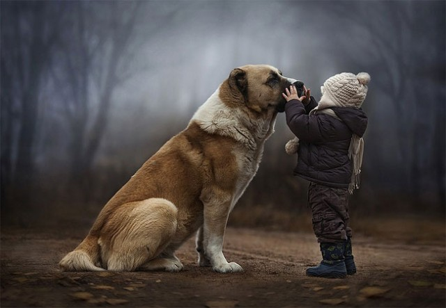 ChildhoodLovesAnimals-640x443