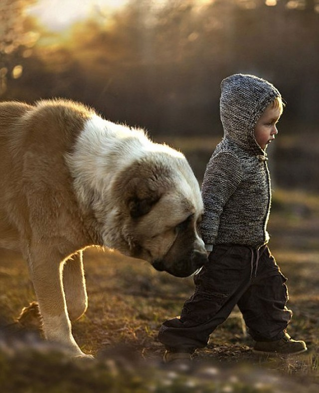 ChildhoodLovesAnimals4-640x788