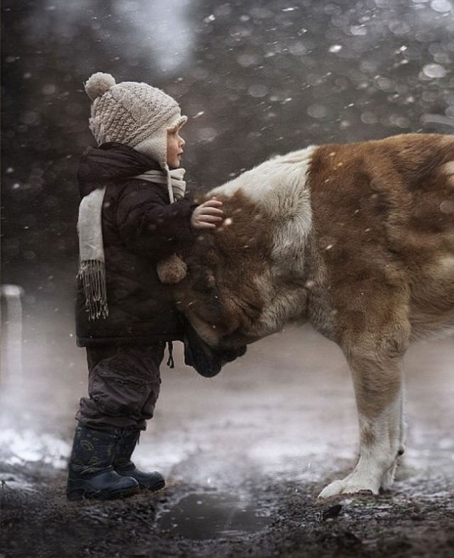 ChildhoodLovesAnimals5-640x788