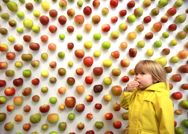 the-real-apple-store00