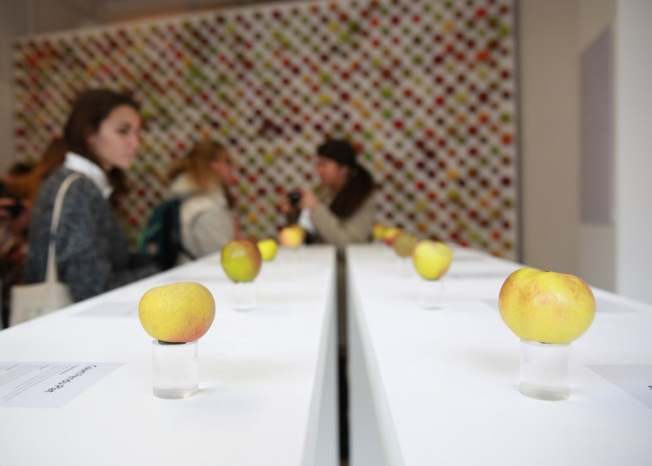 the-real-apple-store02