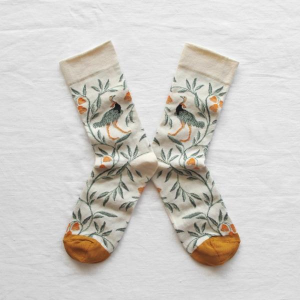 socks-ostrich