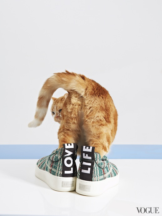 Le-Fashion-Blog-Cats-And-Flats-Celine-Slip-On-Sneakers-Via-Vogue