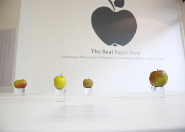 the-real-apple-store01