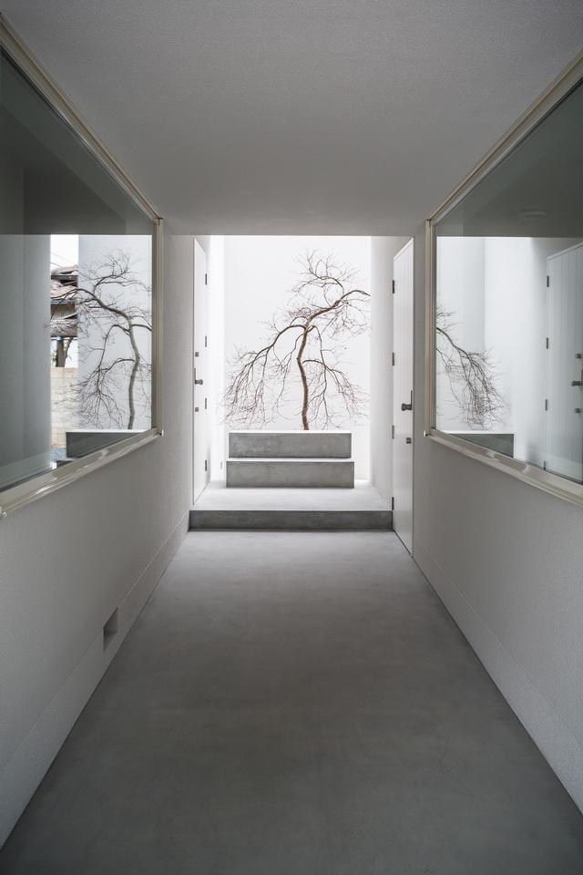 Framing-House-3